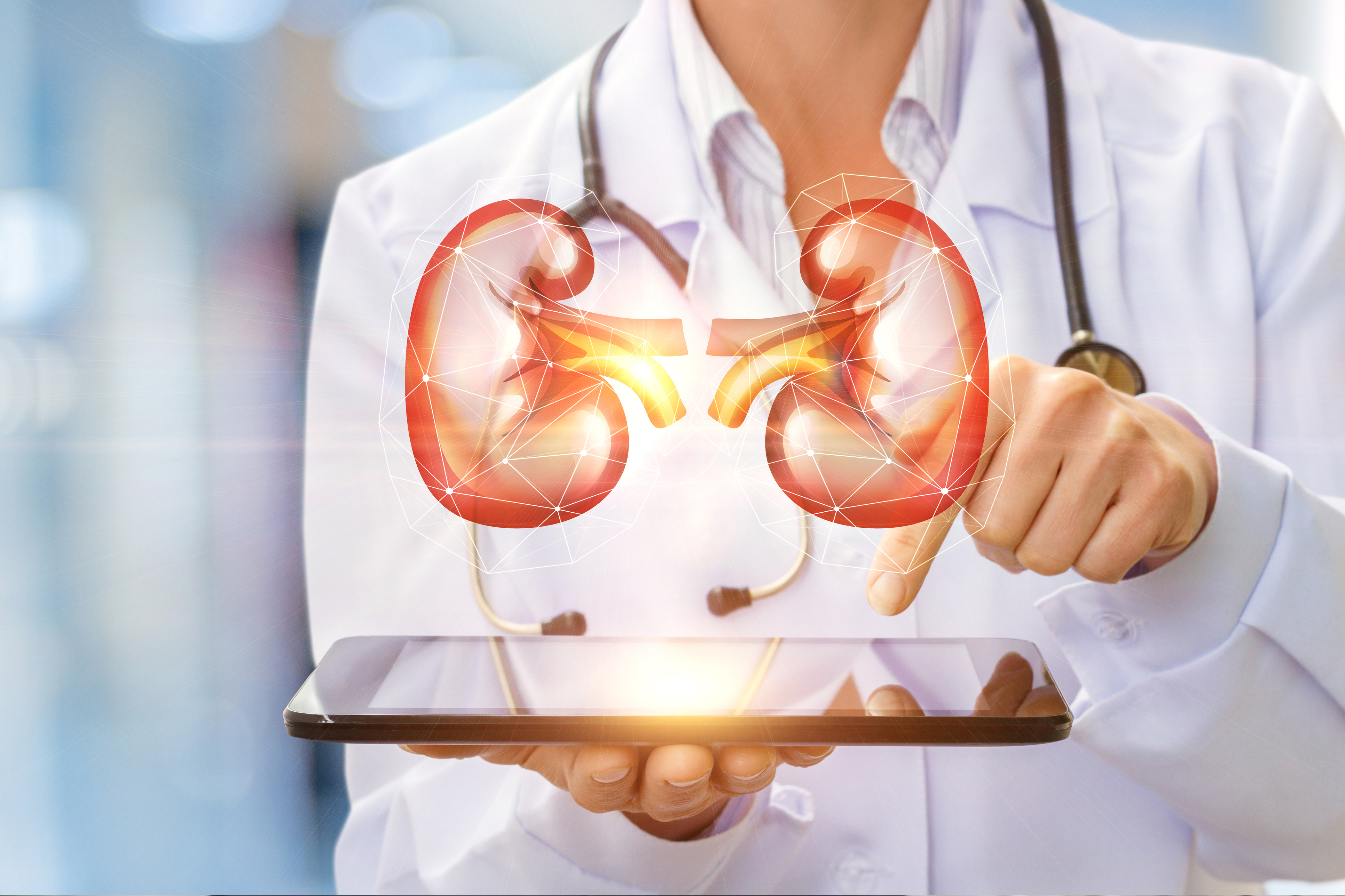 Have You Been to a Kidney Doctor (Nephrologist)?